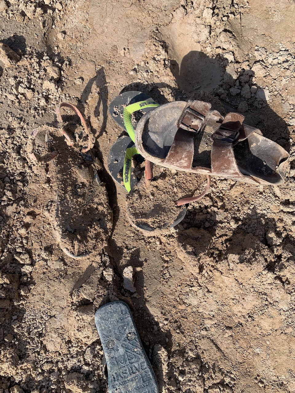 Sandals in the mud